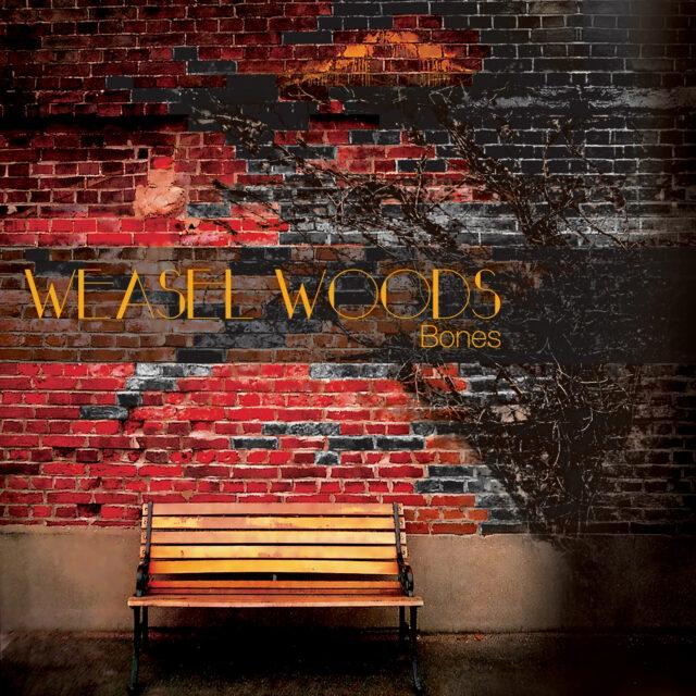 Weasel Woods - Bones album Art