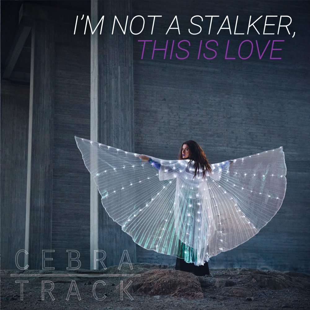 I'm Not a Stalker, This is Love Cover